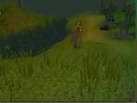 Runescape – Hunting Guide (levels 1-63)