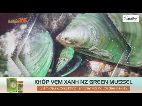 Khớp vẹm xanh NZ Green Mussel – Giảm đau xương khớp, an toàn với người đau dạ dày
