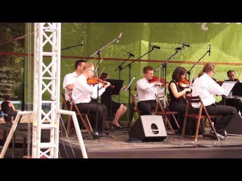 Śląska Orkiestra Kameralna (Filharmonia Śląska), Park Śląski, Chorzów, Rosarium, 04 08 2013 Cz 3