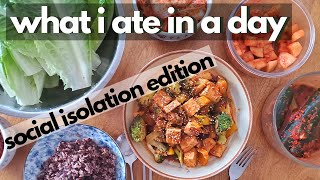 Chill Day of Eating (What I Ate in a Day Vegan Quarantine Edition)