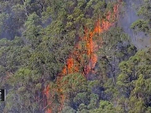 Australia wildfires: Mega-fire feared, thousands evacuated