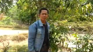 download lagu Air Mata Perpisahan Tommy J Pisa By Herman Bhakti gratis