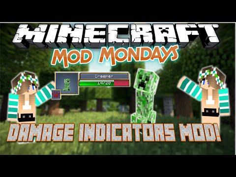 Damage Indicator Mod !!