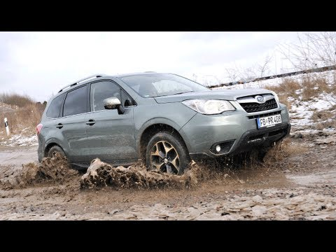 Fahrvorstellung: Subaru Forester