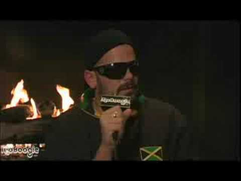 The Wailers - Elan webisode