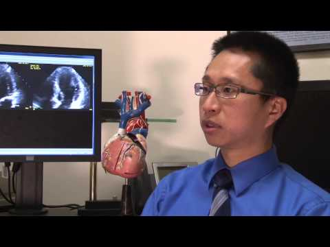 Dr. Vincent Sorrell and Dr. Steve Leung Discuss Cardiac Imaging Techniques at Gill