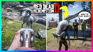What Happens If You Bring A Legendary Animal Back To Camp In Red Dead Redemption 2? (RDR2 SECRETS)