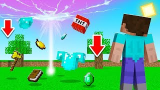 Minecraft BUT ALL ITEMS Are FALLING FROM THE SKY! (lucky & unlucky)