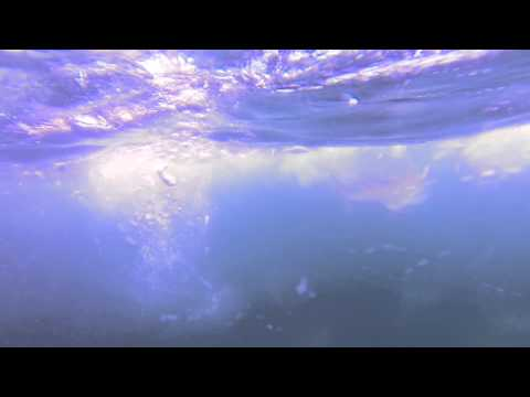 Shark and Rig Diving Louisiana Mississippi March 22, 2014