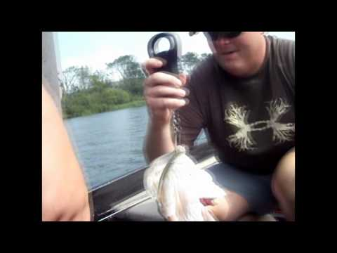 Bass Fishing on Lake Guntersville