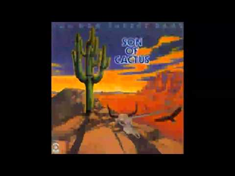 The New Cactus Band - Lady