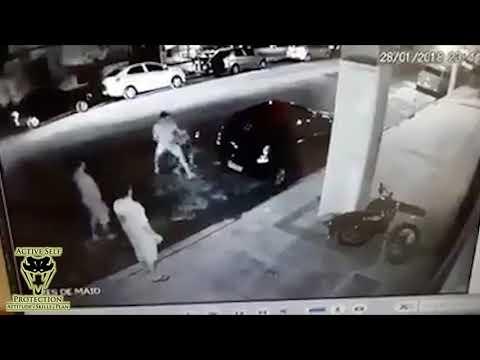 Defender Gives Mugger an Educational Beat Down | Active Self Protection