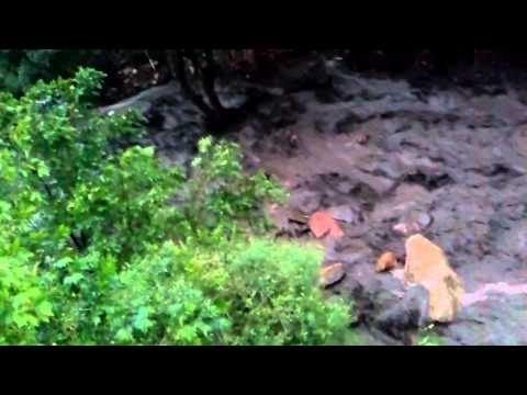 Manitou springs flood up 8/9/13