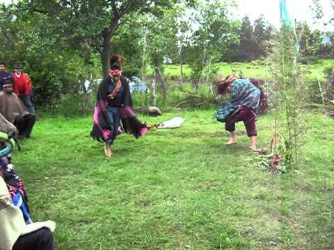 baile ave mapuche 1.avi