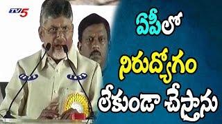 యువతకు ఉద్యోగ భరోసా | AP CM Chandrababu Naidu Promises Jobs For Youth