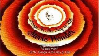 Watch Stevie Wonder Black Man video