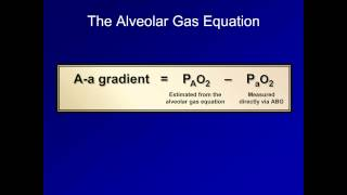 The A-a Gradient (ABG Interpretation - Lesson 16)
