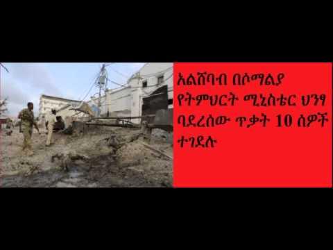 DireTube News - Al-Shabaab militants kill 10 in attack on Somali education ministry