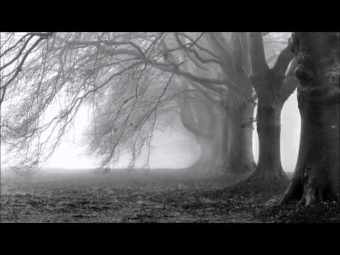 The Host Of Seraphim - Dead Can Dance - The Mist Soundtrack