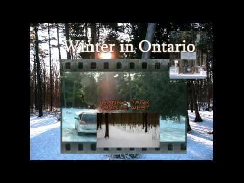 Kinsmen Community Dog Park Trenton Ontario