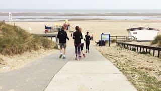 Rennen op het strand en zielige zeehonden