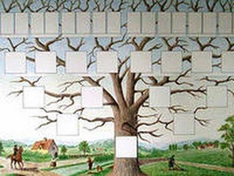 Семейное древо картинки