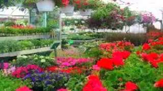 Landscaping Services | Waukesha, WI – Bluemel's Garden & Landscaping Center