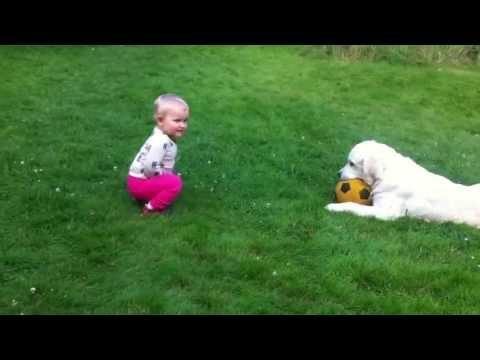超キュート☆ボールを欲しがる赤ちゃん。必死に犬を説得?!