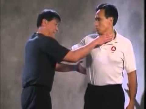 Jeet Kune Do JKD Techniques Part 6 Image 1