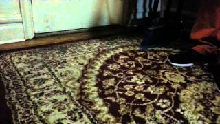 HOW TO CLEAN YOUR CARPET VACUUM WIHTOUT GIVING,COMO LIMPIAR TU ALFOMBRA SIN DARLE VACUUM