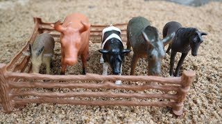 Farm Animals For kids, Review toys Animals, Donkey, Horse, Goat, Duck