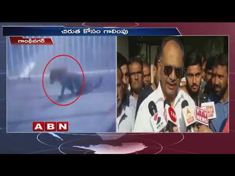 Leopard enters Gujarat's state secretariat CCTV footage | ABN Telugu