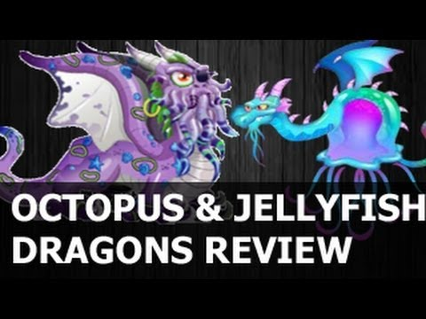 OCTOPUS DRAGON and JELLYFISH DRAGON CITY Review Eggs Level Up and Combat Video