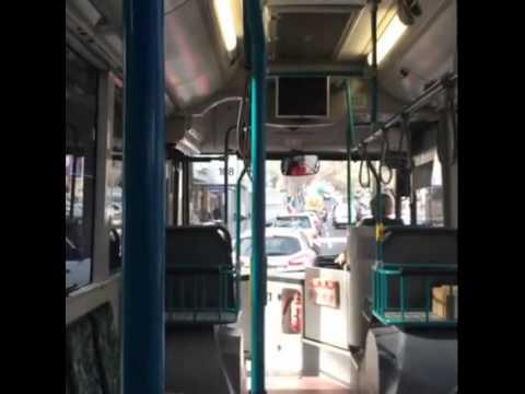Melbourne Public Transport For Tourists