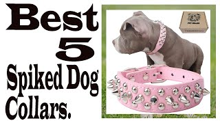 Spiked Dog Collars For Protection || Best 5 Spiked Dog Collars In 2019 || Spiked Dog Collar Reviews.