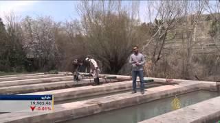 مساع لتطوير مزارع الأسماك في أفغانستان