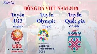 Bóng đá Việt Nam trong năm 2018