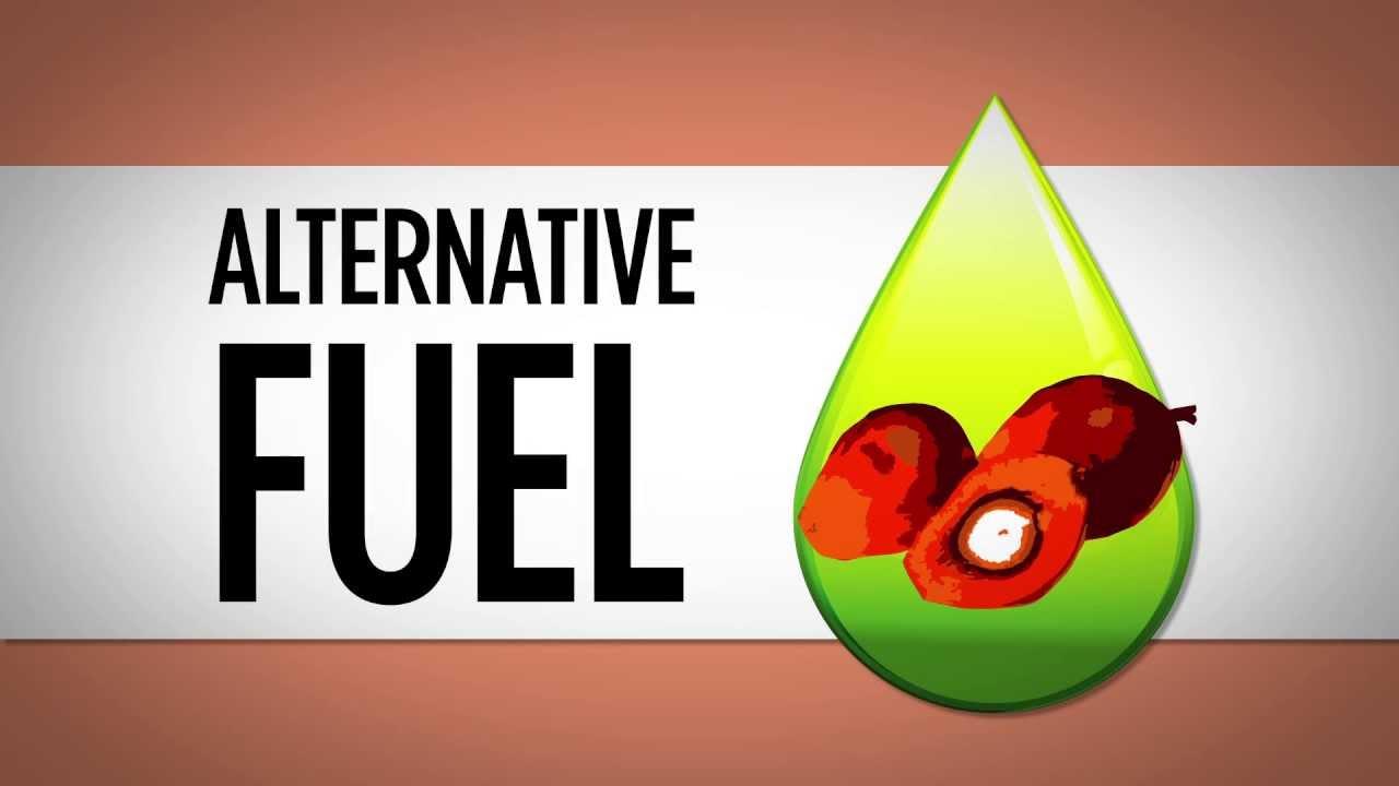 palm oil - biofuel