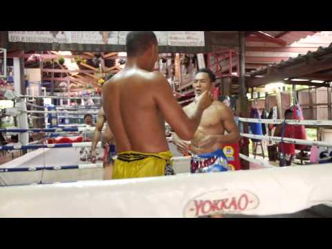 Muay Thai IS FUN - Saenchai clinching with Orono @yokkaoboxing Image 1