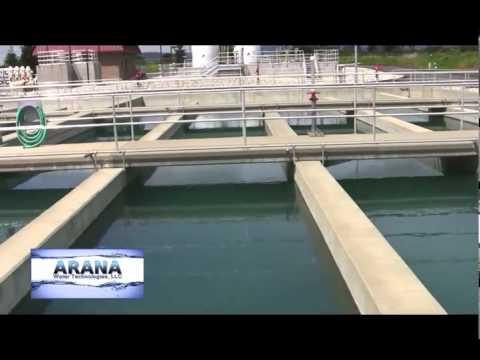 ARANA (SPANISH) By Progresso U.S. Corporation