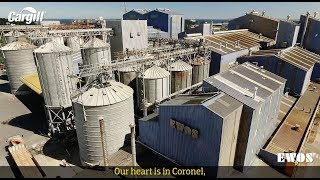 Cargill CEO Says 'Not a Good Moment' for Agriculture Economy