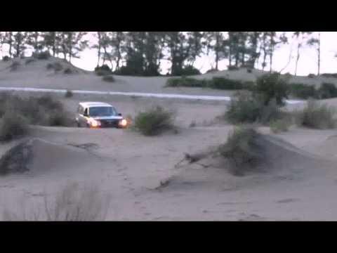 Nissan Roniz