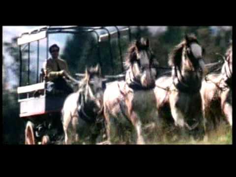 Mohabbat Hui Hai Full Song Karz- The Burden Of Truth