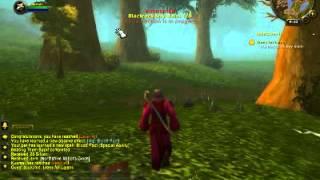 Pandashan Human Warlock Leveling Series 1-5