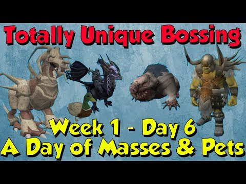Week 1, Day 6 - 2 More Pets! [Runescape 3] Totally Unique Bossing #6