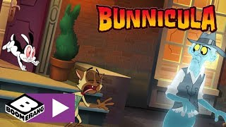Bunnicula | Bunnicula Blues | Boomerang UK 🇬🇧