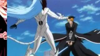 Ichigo vs Grimmjow Final Fight English sub
