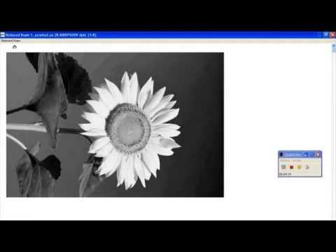 Filmadoras / Impresoras Térmicas de Fotolitos