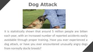 Have you been injured in a Car Accident, Truck Accident or Dog Attack ?