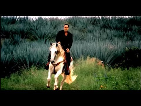 Luis Miguel - Que Seas Feliz